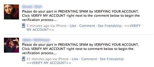 verify-my-account