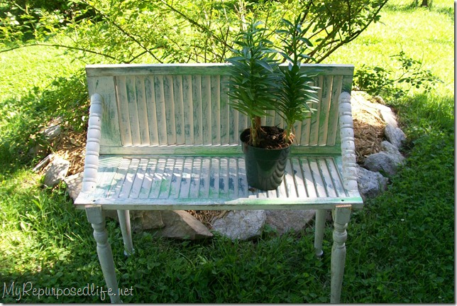 chippy green plant bench shelf