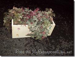 planter box as found