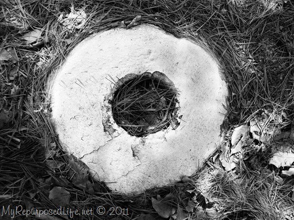 alphabet photography o