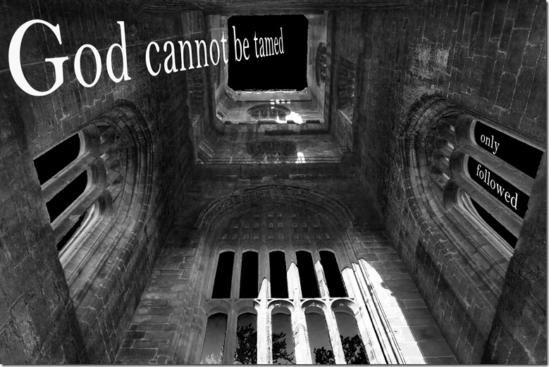 god cannot be tamed only followed copy