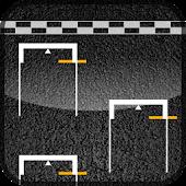Race Standings Widget