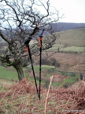 Pacer Poles on the climb to Knott Rigg