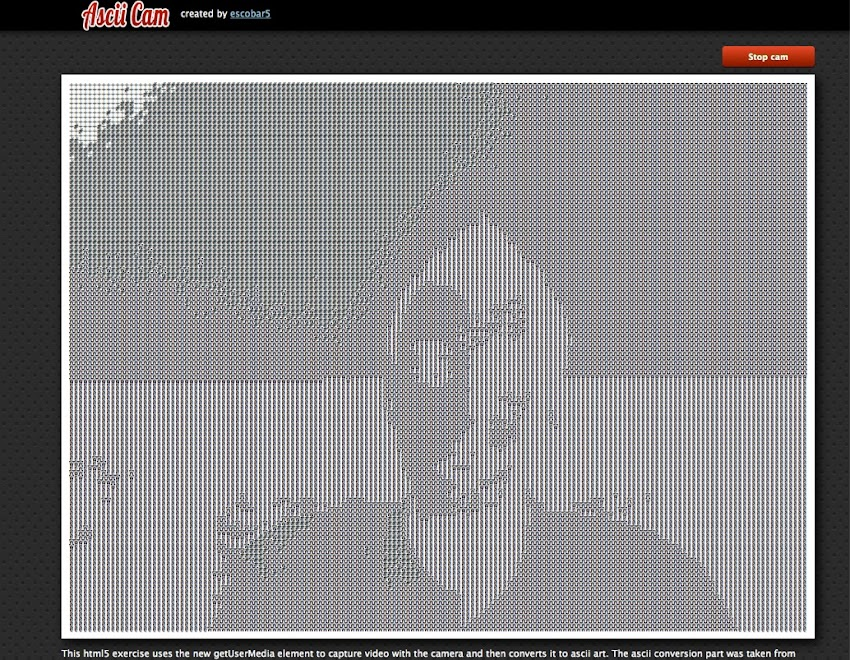 Ascii Cam by escobar5 | Experiments with Google