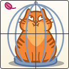 Slide Cat icon