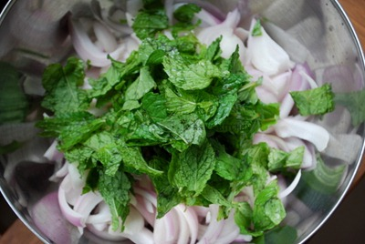 chopped onion,mint