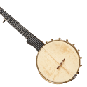 Banjo lessons for beginners icon