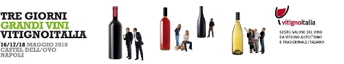 Lo slogan di vitignoitalia 2010