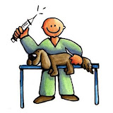 veterinario.jpg