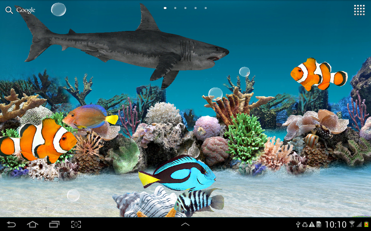 3d aquarium live wallpaper hd android apps p google play for Aquarium fish online
