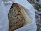 Piknik zimową porą