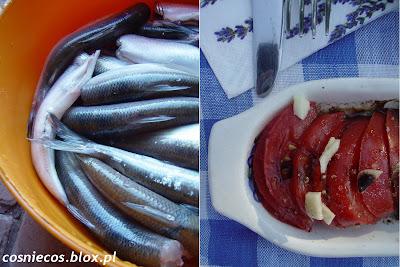 Ryby na lato