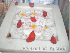 feet of lord Krishna