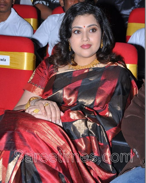 Meena in Traditional Saree | sareetimes