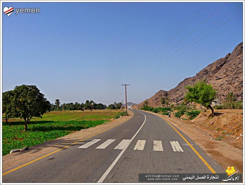 مكان جديد من اليمن السعيد . . . الخوخه P1320096.JPG