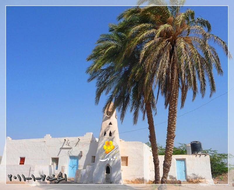 مكان جديد من اليمن السعيد . . . الخوخه 5000.jpg