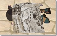 sealonline Newspaper bed