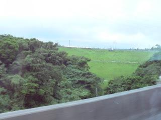 沖縄自動車道から堤体下流側を望む(その2)