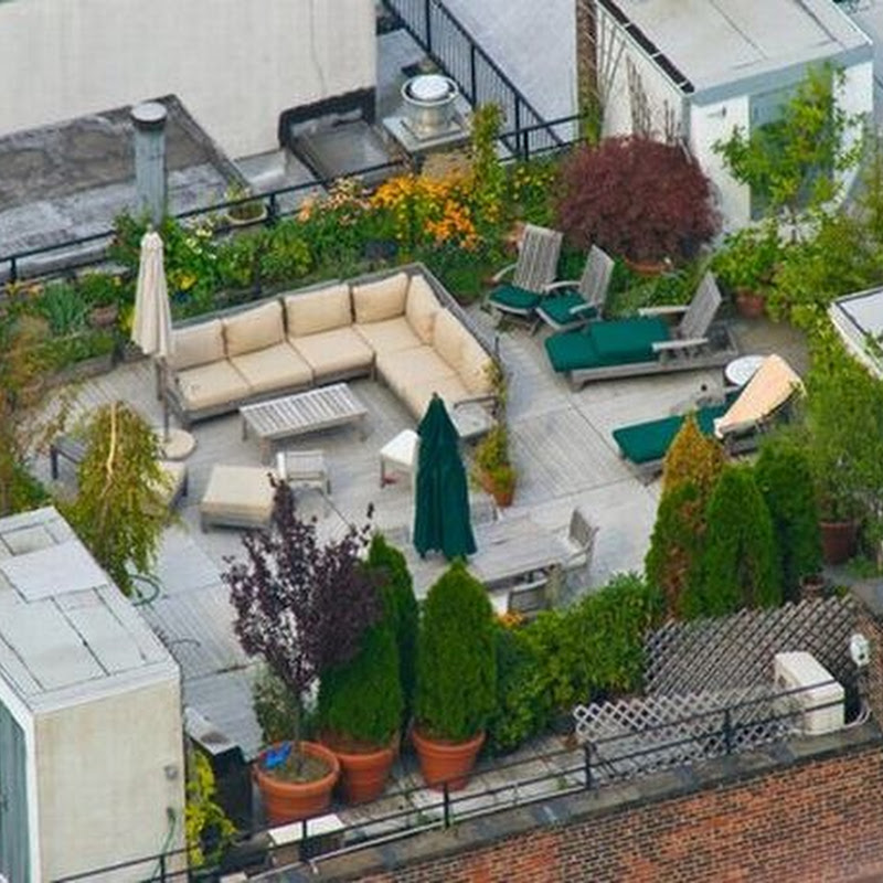 Rooftops of Rich People of New York
