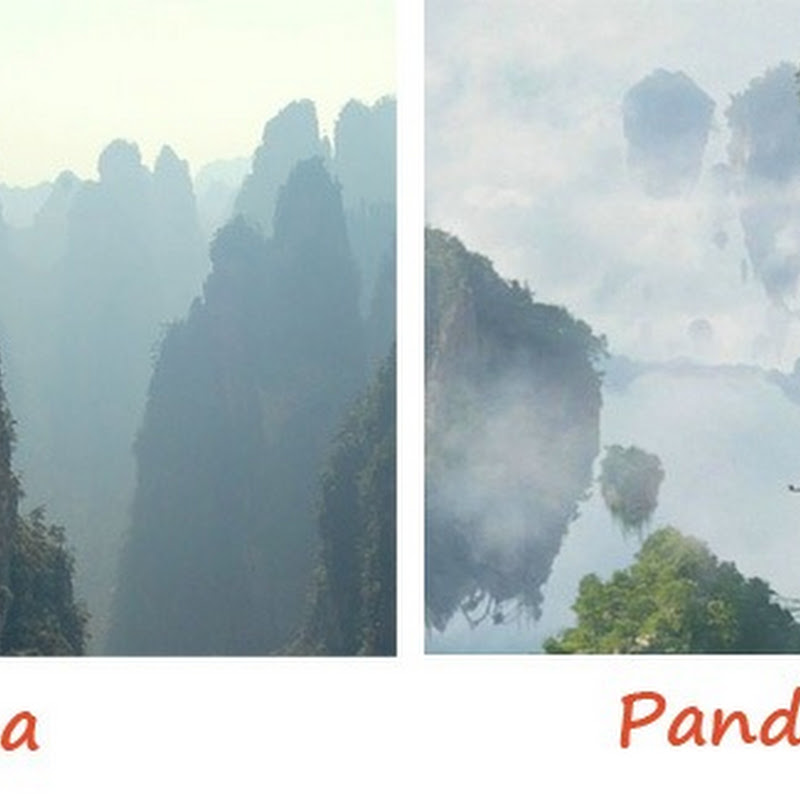 Zhangjiajie National Forest Park – Pandora on Earth