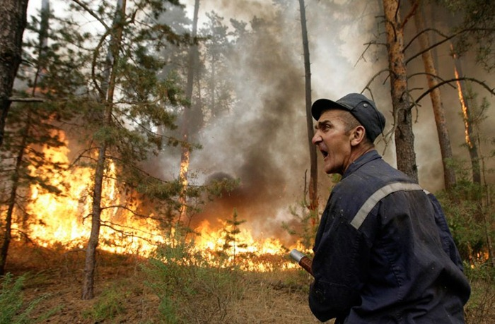 russia-forest-fire (21)