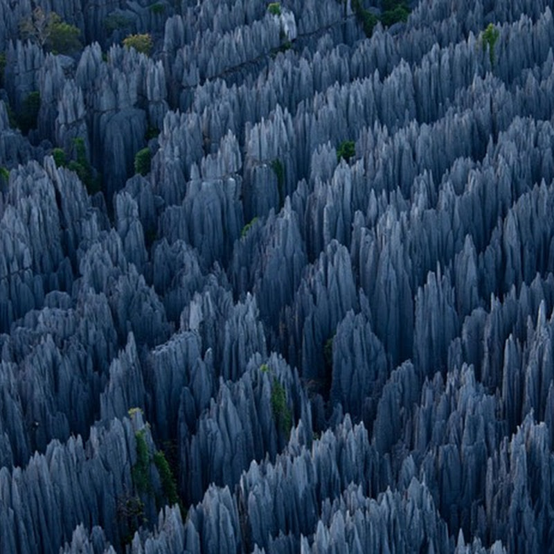 Tsingy: The Stone Forest of Madagascar