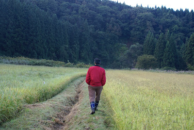 太平山自然農園主 おくちゃんの後ろ姿