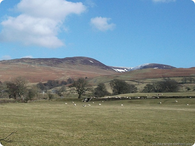 middleton fell from the lane