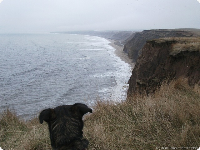 durham coast path