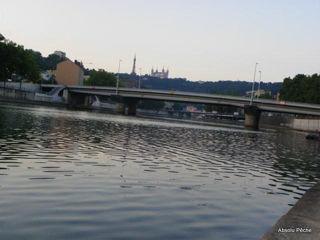 Saône, pont Masaryk photo #82