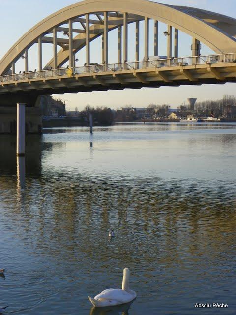 Pont de Neuville sur Saône photo #272