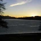 Lac des sapins à Cublize photo #227