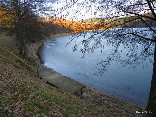 Lac des sapins à Cublize photo #225