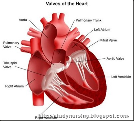 heart health problems content pieces 2010