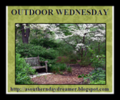 OutdoorWednesdaylogo55444
