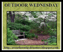 OutdoorWednesdaylogo5