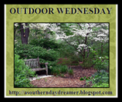 OutdoorWednesdaylogo545