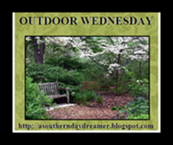 OutdoorWednesdaybutton5433333333