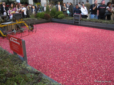 Cranberry Bog in Rockefeller Center in 2009 - Photo by Taste As You Go