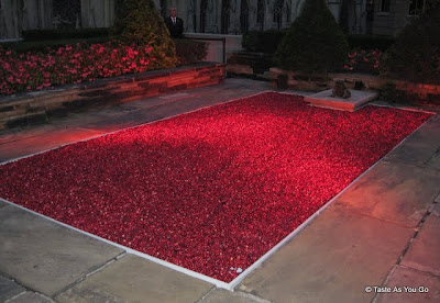 Cranberry Bog - Photo by Taste As You Go