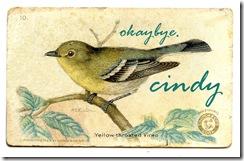 birdvireogfairy004