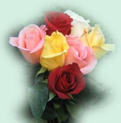 Mandar una Rosa y un Beso