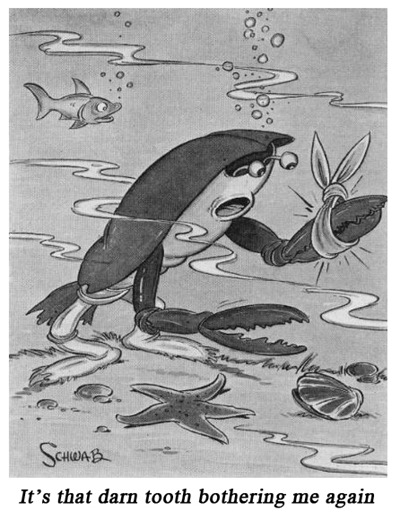 Fred Schwab Cartoon Boys Life 2 May 1939
