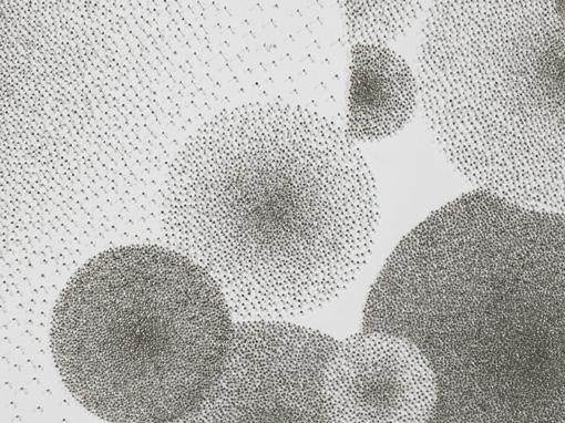 Drawings (Pins), 2010 (detail)