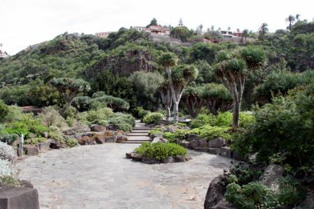 El diwan el jard n canario jard n bot nico viera y for Jardin botanico viera y clavijo