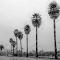 Boardwalk Friday-49-2.jpg