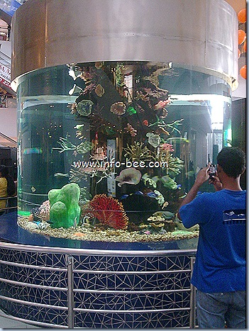 Aquarium at GVK ONE