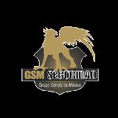 GSM Seguridad