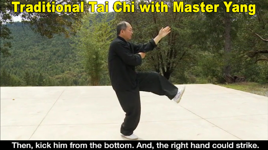 Yang Tai Chi for Beginners 2&3- screenshot thumbnail