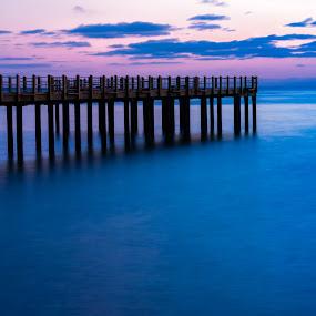 by Miren Etcheverry - Landscapes Waterscapes ( martha's vineyard, fishing pier, water, vineyard, harbor, blue, sunset )